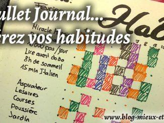 Bme-bulletjournal-habitudes1