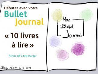 Bme-bulletjournal-10livrealire
