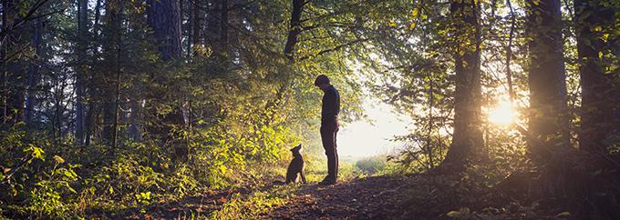 EG man walking his dog in the woods P5J942Q
