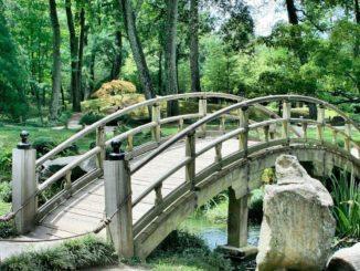 ALR -Pont japonais
